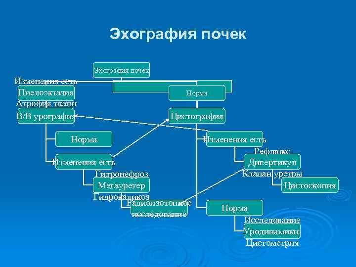 Эхография почек Изменения есть Пиелоэктазия Атрофия ткани почек В/В урография Норма Цистография Норма Изменения