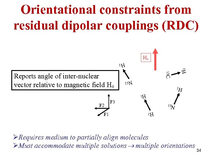 Orientational constraints from residual dipolar couplings (RDC) Ho F 2 F 1 F 3