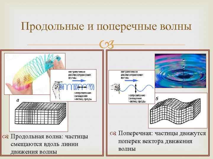 Продольные и поперечные волны Продольная волна: частицы смещаются вдоль линии движения волны Поперечная: частицы