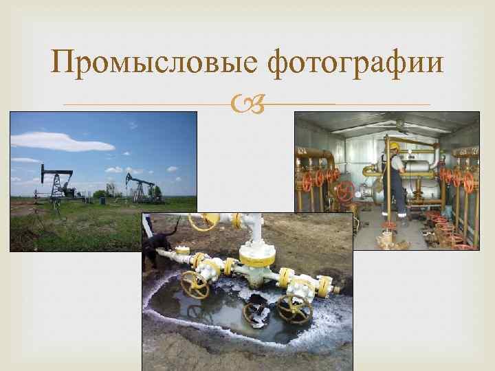 Промысловые фотографии