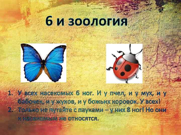 6 и зоология