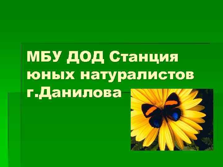 МБУ ДОД Станция юных натуралистов г. Данилова