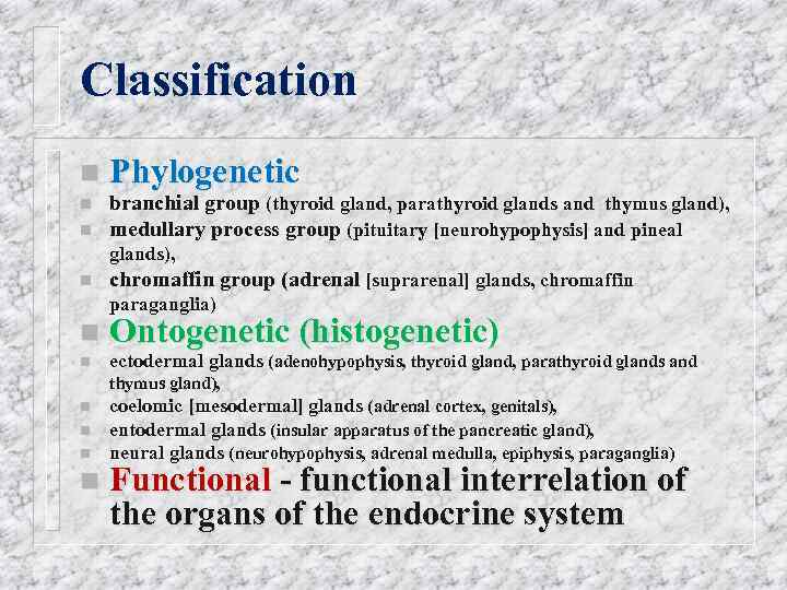Classification n Phylogenetic branchial group (thyroid gland, parathyroid glands and thymus gland), medullary process