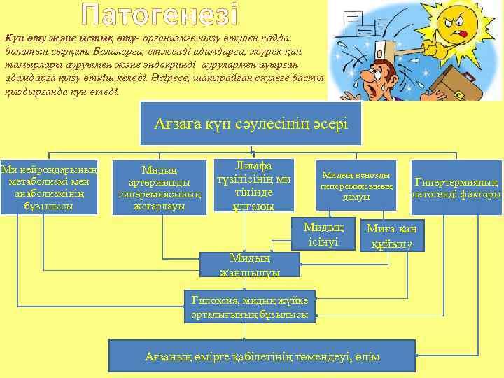 Патогенезі Күн өту және ыстық өту- организмге қызу өтуден пайда болатын сырқат. Балаларға, етженді