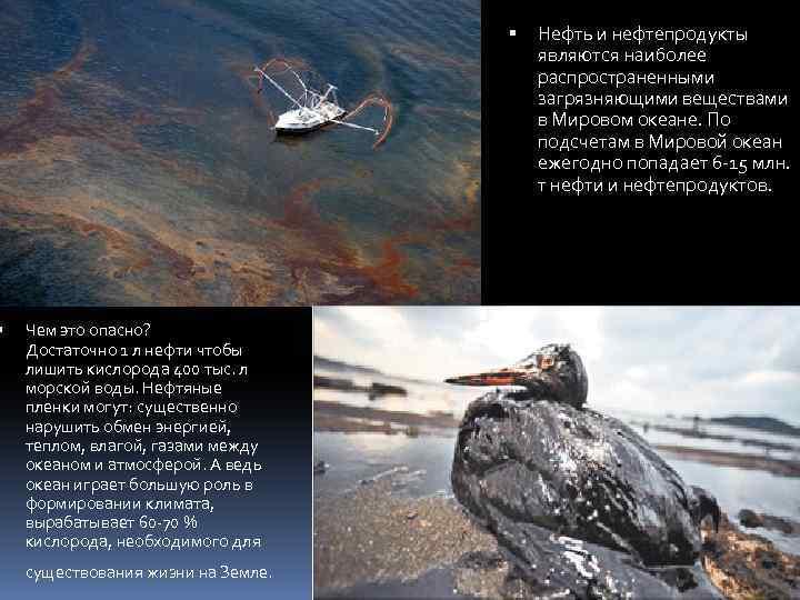 Чем это опасно? Достаточно 1 л нефти чтобы лишить кислорода 400 тыс. л