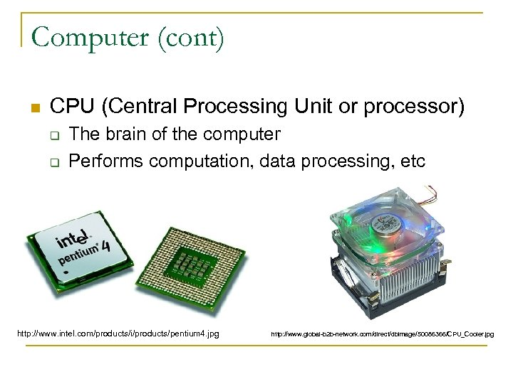 Computer (cont) n CPU (Central Processing Unit or processor) q q The brain of
