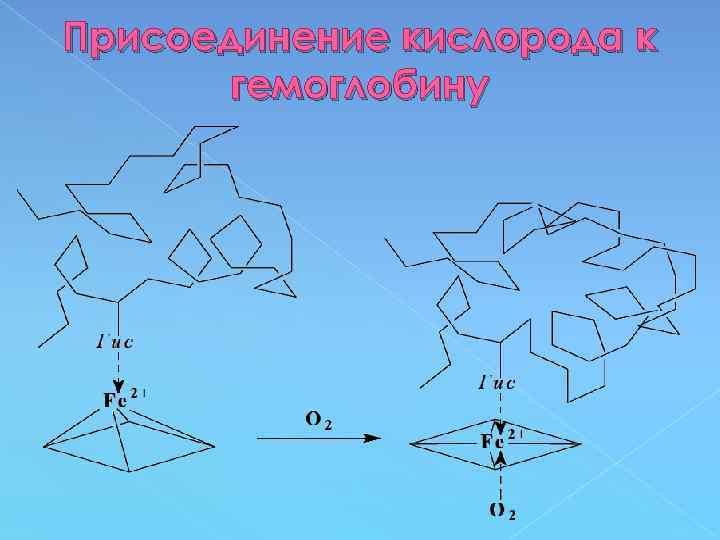 Присоединение кислорода к гемоглобину