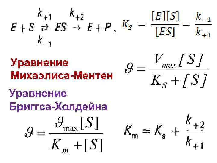 Уравнение Михаэлиса-Ментен Уравнение Бриггса-Холдейна