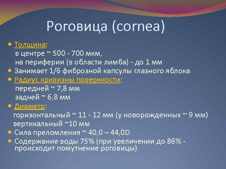 Роговица (cornea) Толщина: в центре ~ 500 - 700 мкм, на периферии (в области
