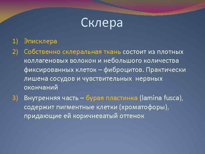 Склера 1) Эписклера 2) Собственно склеральная ткань состоит из плотных коллагеновых волокон и небольшого