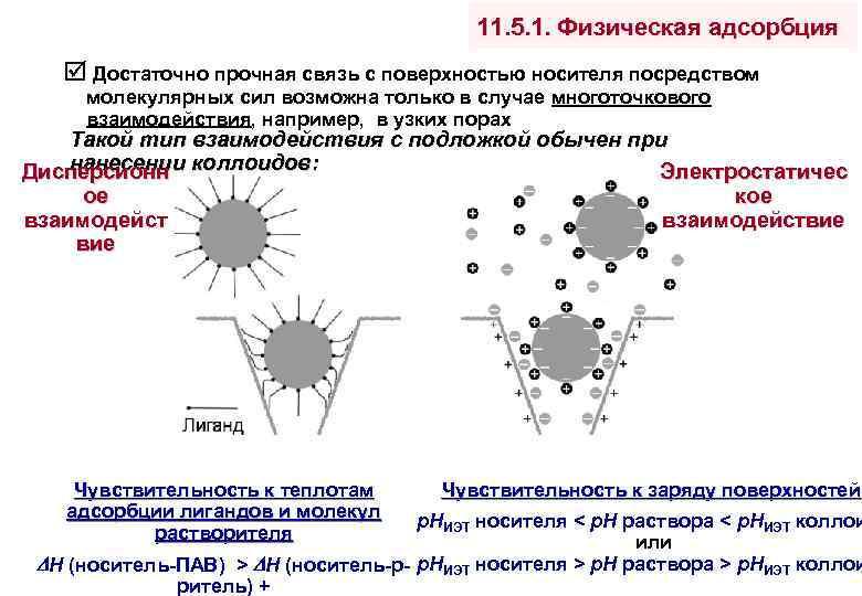 11. 5. 1. Физическая адсорбция Достаточно прочная связь с поверхностью носителя посредством молекулярных сил