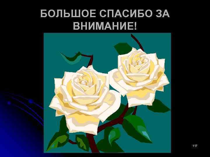 БОЛЬШОЕ СПАСИБО ЗА ВНИМАНИЕ! 117