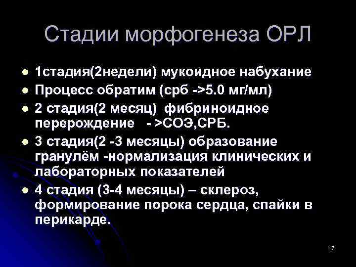 Стадии морфогенеза ОРЛ l l l 1 стадия(2 недели) мукоидное набухание Процесс обратим (срб