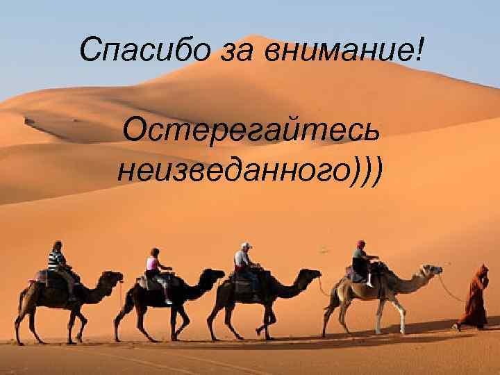 Спасибо за внимание! Остерегайтесь неизведанного)))