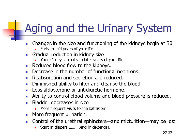Aging and the Urinary System n Changes in the size and functioning of the