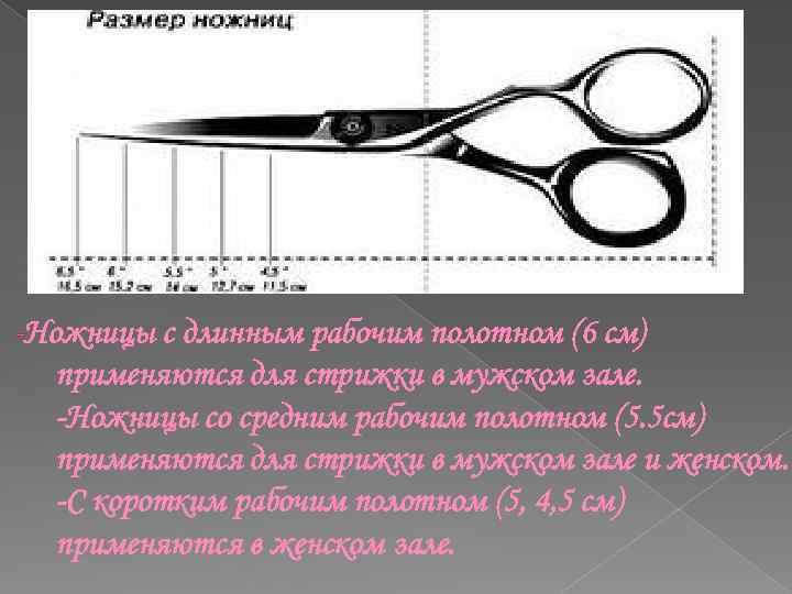 -Ножницы с длинным рабочим полотном (6 см) применяются для стрижки в мужском зале. -Ножницы
