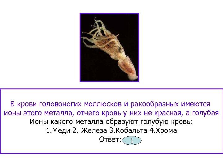 В крови головоногих моллюсков и ракообразных имеются ионы этого металла, отчего кровь у них