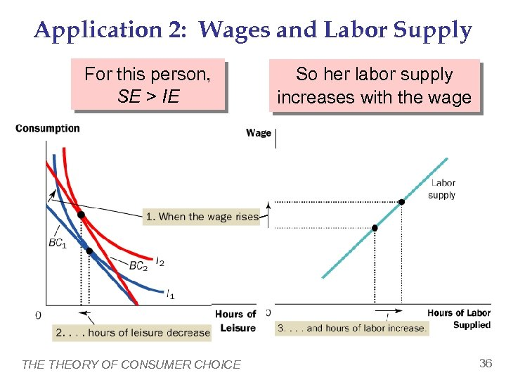 Application 2: Wages and Labor Supply For this person, SE > IE THEORY OF