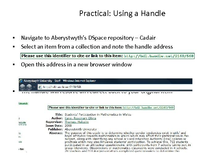 Practical: Using a Handle Navigate to Aberystwyth's DSpace repository – Cadair Select an item