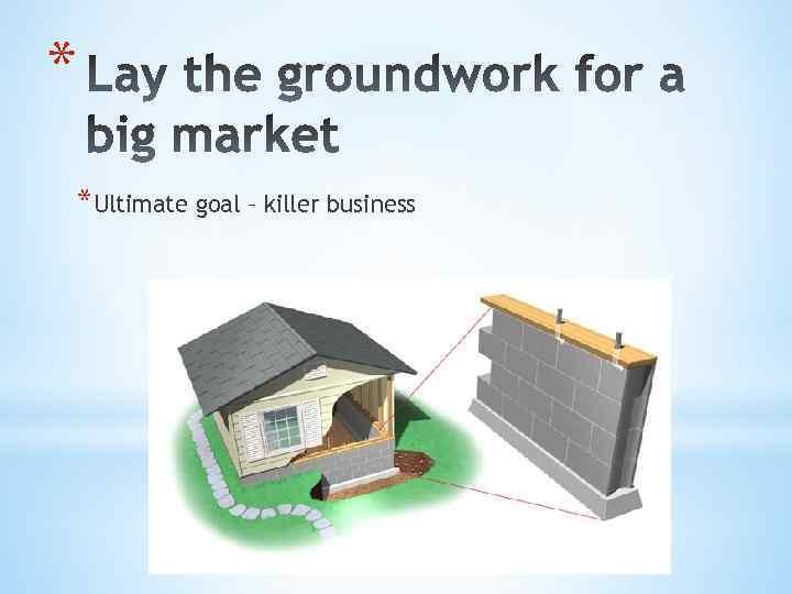 * *Ultimate goal – killer business