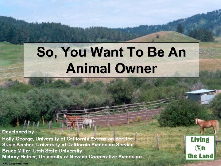 So, You Want To Be An Animal Owner Developed by: Holly George, University of