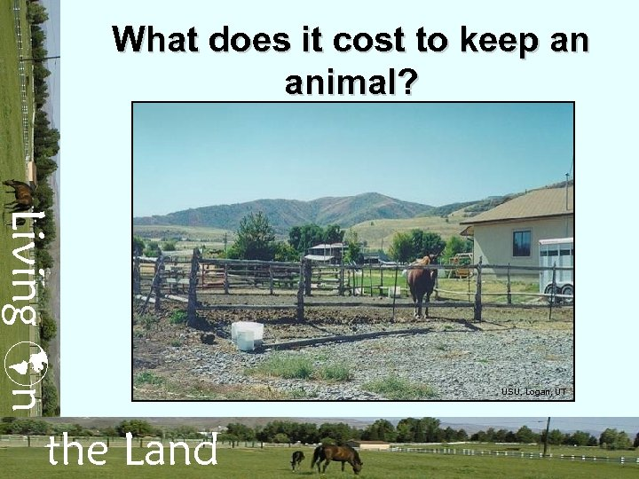 What does it cost to keep an animal? Living n the Land USU, Logan,