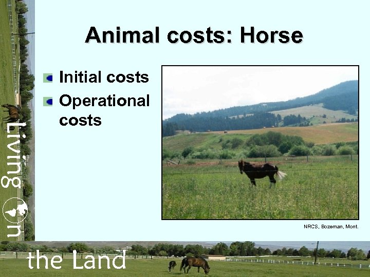 Animal costs: Horse Living n Initial costs Operational costs the Land NRCS, Bozeman, Mont.