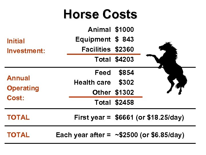 Horse Costs Initial Investment: Animal Equipment Facilities Total $1000 $ 843 $2360 $4203 Annual