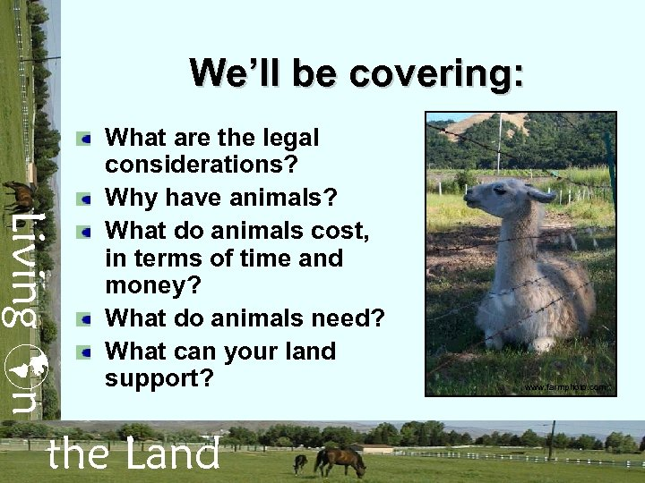 We'll be covering: Living n What are the legal considerations? Why have animals? What