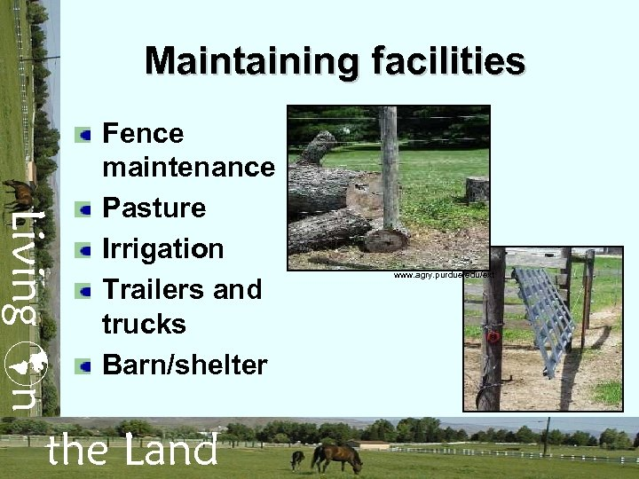 Maintaining facilities Living n Fence maintenance Pasture Irrigation Trailers and trucks Barn/shelter the Land