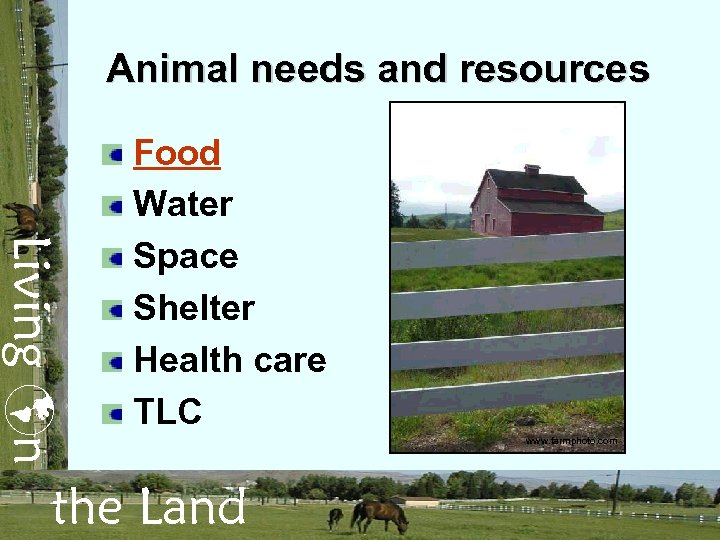 Animal needs and resources Living n Food Water Space Shelter Health care TLC the