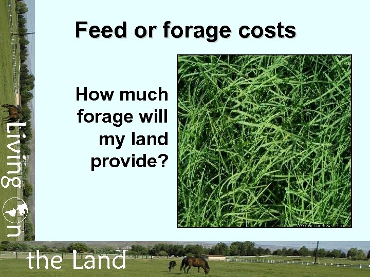 Feed or forage costs Living n How much forage will my land provide? the