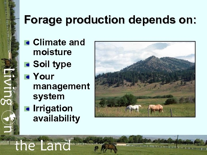 Forage production depends on: Living n Climate and moisture Soil type Your management system