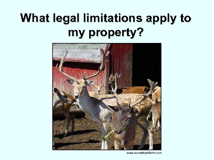 What legal limitations apply to my property? www. burnettepetfarm. com