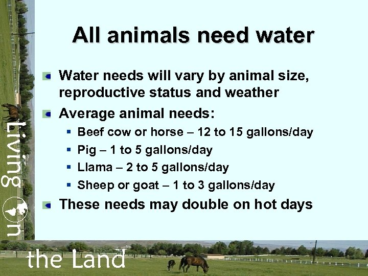 All animals need water Living n Water needs will vary by animal size, reproductive