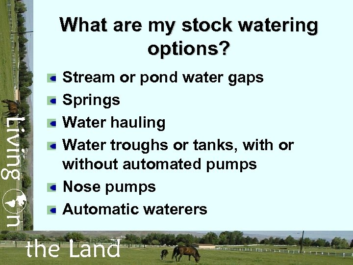 What are my stock watering options? Living n Stream or pond water gaps Springs