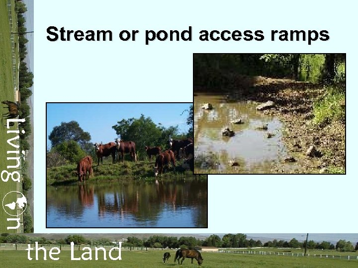 Stream or pond access ramps Living n the Land