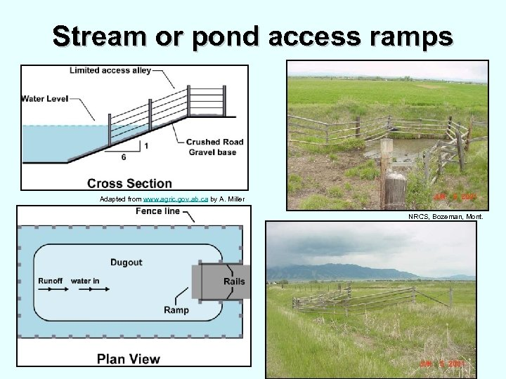 Stream or pond access ramps Adapted from www. agric. gov. ab. ca by A.