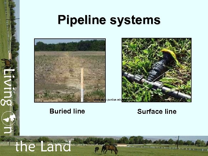 Pipeline systems Living n www. agry. purdue. edu/ext Buried line the Land Surface line