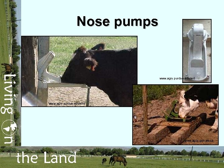 Nose pumps Living n www. agry. purdue. edu/ext/ the Land www. agric. gov. ab.