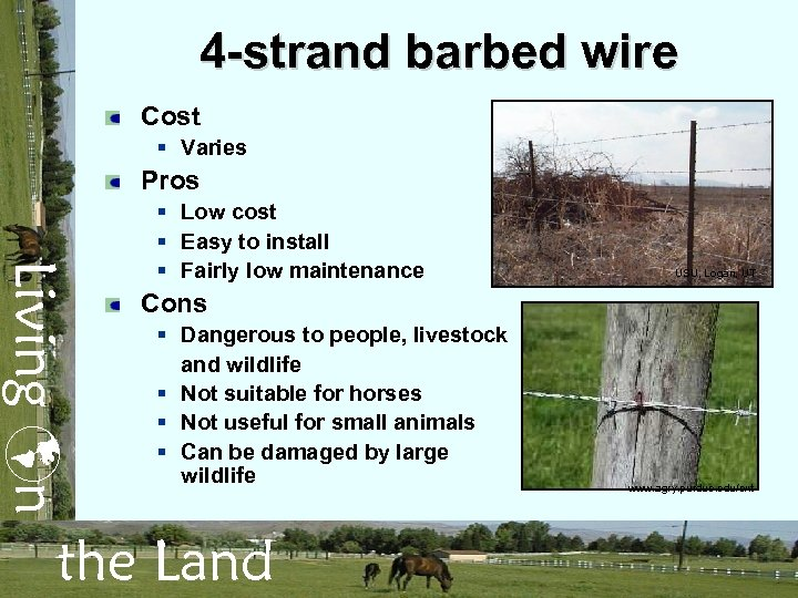 4 -strand barbed wire Cost § Varies Pros Living n § Low cost §