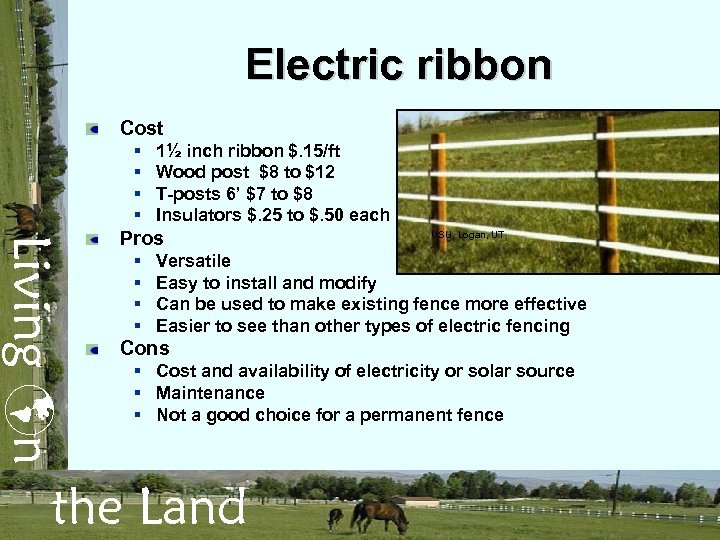 Electric ribbon Cost § § 1½ inch ribbon $. 15/ft Wood post $8 to