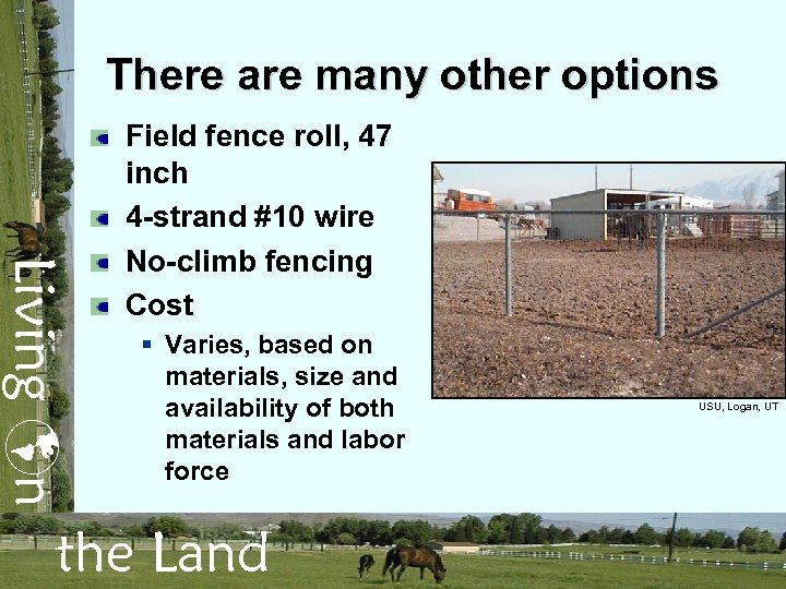 There are many other options Living n Field fence roll, 47 inch 4 -strand