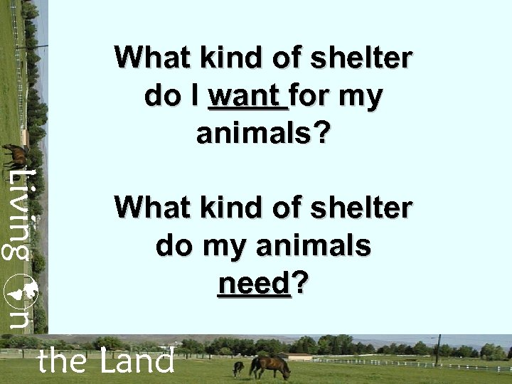 What kind of shelter do I want for my animals? Living n What kind