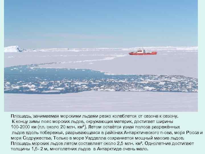 Площадь, занимаемая морcкими льдами резко колеблется от сезона к сезону. К концу зимы пояс