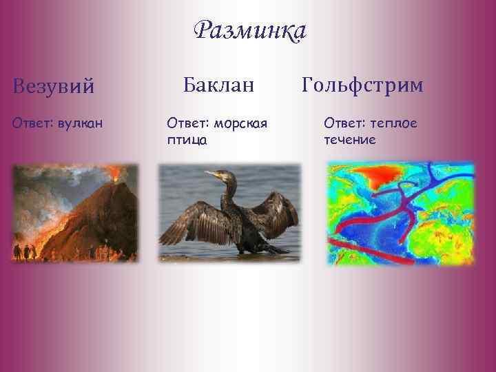 Разминка Везувий Баклан Ответ: вулкан Ответ: морская птица Гольфстрим Ответ: теплое течение