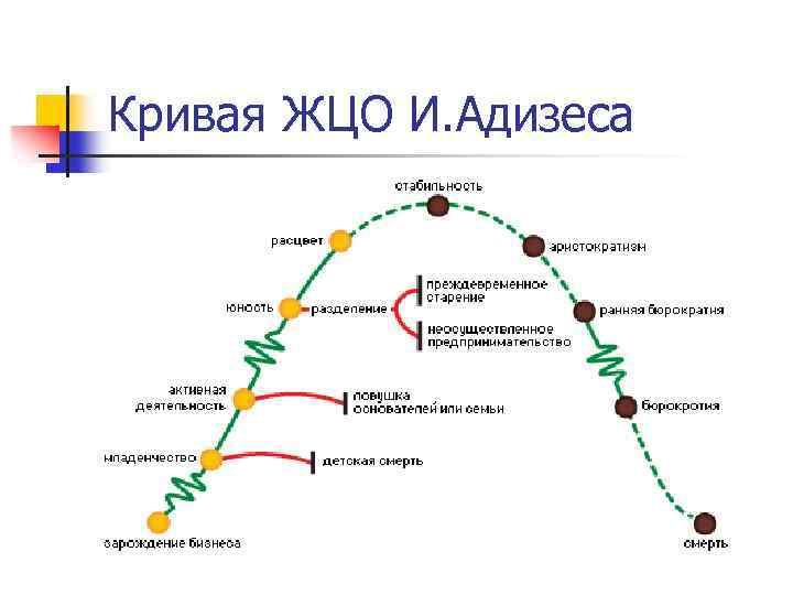 Кривая ЖЦО И. Адизеса