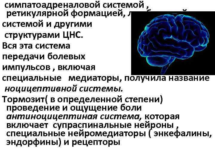 симпатоадреналовой системой , ретикулярной формацией, лимбической системой и другими структурами ЦНС. Вся эта система