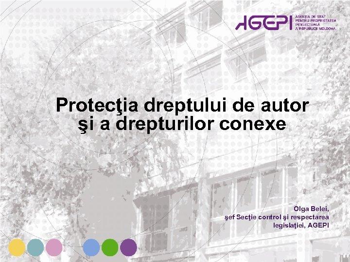 Protecţia dreptului de autor şi a drepturilor conexe Olga Belei, şef Secţie control şi