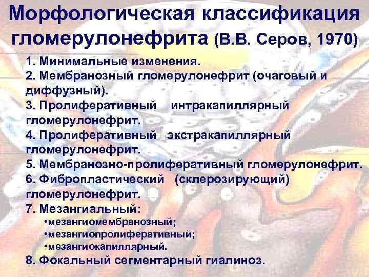 Морфологическая классификация гломерулонефрита (В. В. Серов, 1970) 1. Минимальные изменения. 2. Мембранозный гломерулонефрит (очаговый